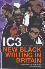 Penguin Book of New Black Writing