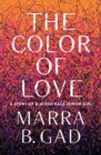 The Color of Love : A Story of a Mixed-Race Jewish Girl